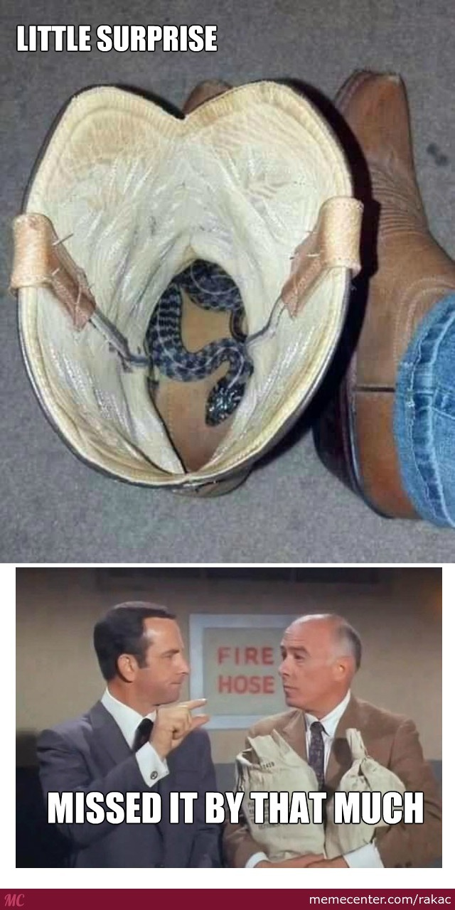 Always Look Into The Boots
