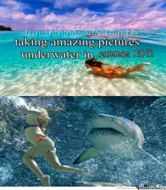 Amazing Underwater Pictures