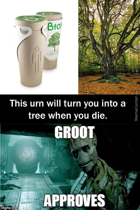 """"""" We Are Groot """""""