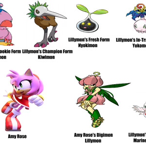 Amy Rose And Her Digimon Lillymon by tharandomanchiornis1 - Meme ...