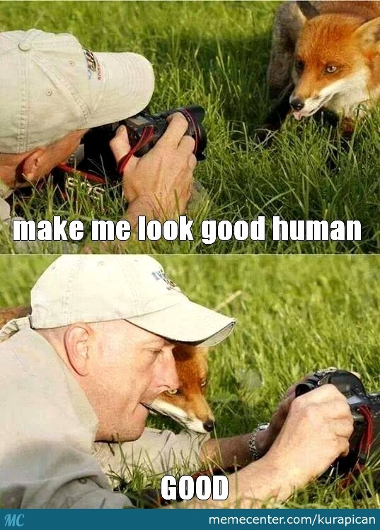 And That's The Creator Of Firefox Logo