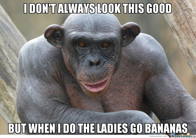 and the guys go ape shit_o_2244795 and the guys go ape shit by bacon_pancakes meme center