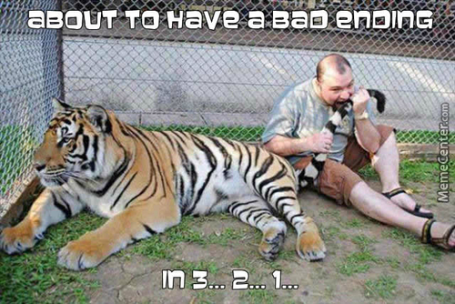 And The Tiger Just Had A Happy Ending