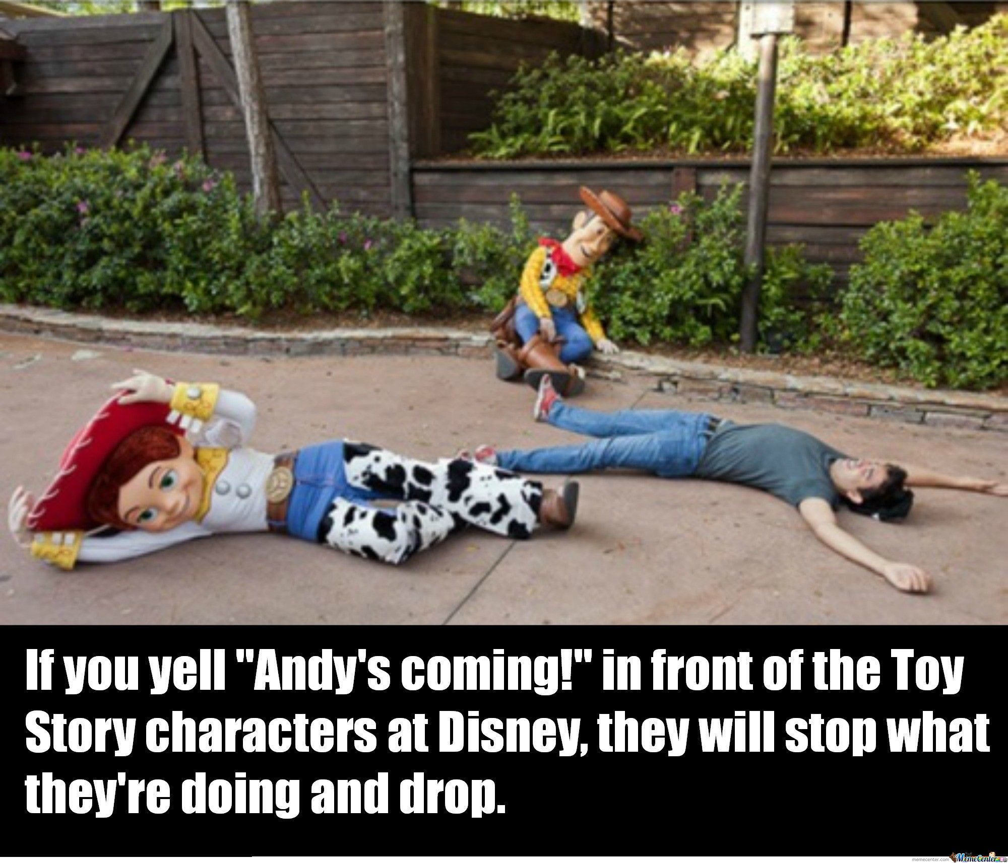 Andy's Coming!