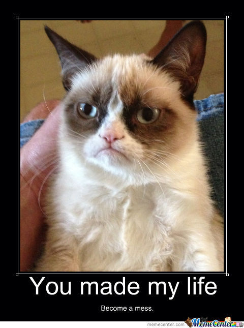 angry cat meme cartoon - photo #41