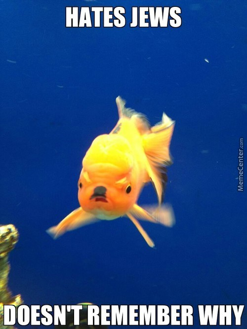 Angry Hilter Goldfish