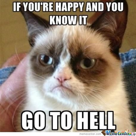 Grumpy Cat Is Angry