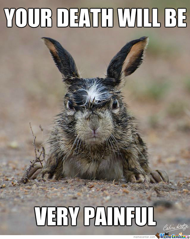 angry rabbit is angry_o_1680971 angry, rabbit is angry by zul83 meme center