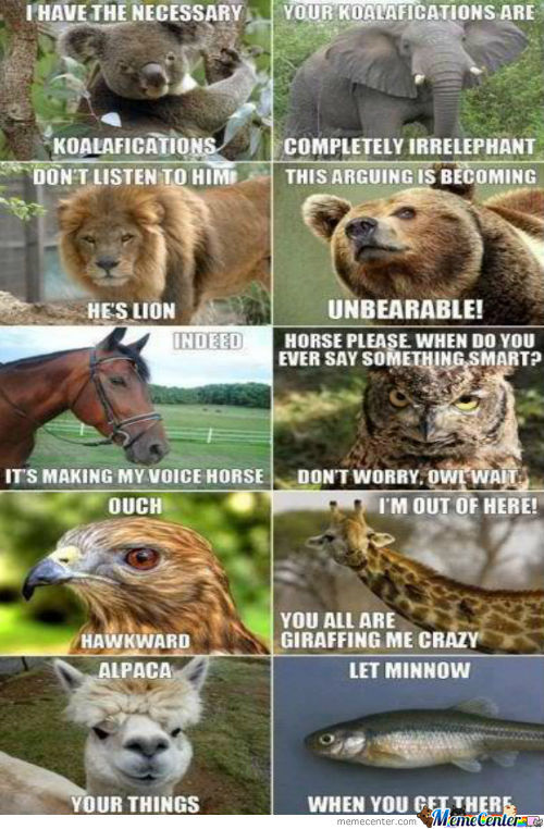 Animals Are So Punny