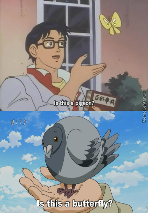 Anime ...where A Pigeon Is A Butterfly And A Butterfly Is ...