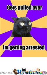 anxiety cat_o_742377 anxiety cat by madlolhatter meme center