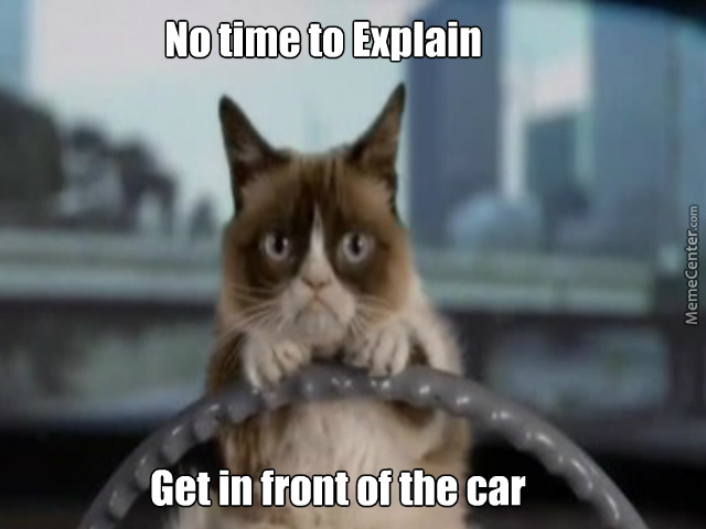 Know One Likes A Grumpy Cat