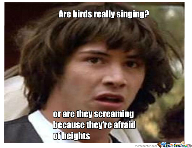 Are The Birds Really Singing??
