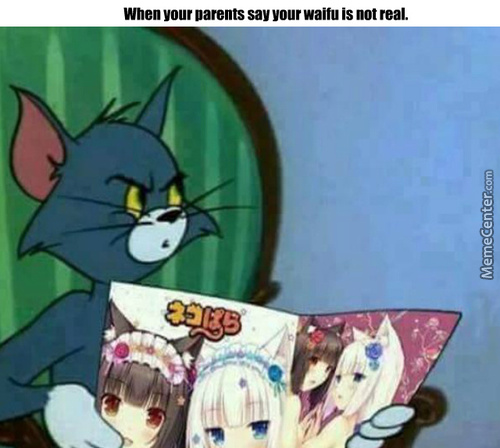 At Least My Waifu Would Not Cheat On Me With Another Man.