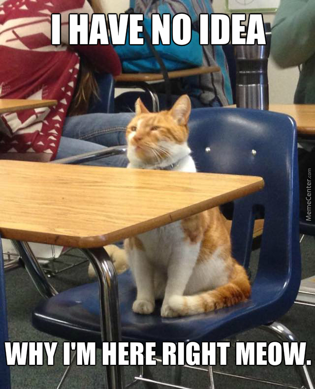 At School Nobody Knows You Re A Cat By Tehpanda Meme