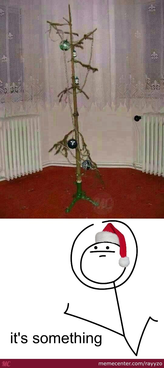 Atleast You Had A Tree... Or Something Like That
