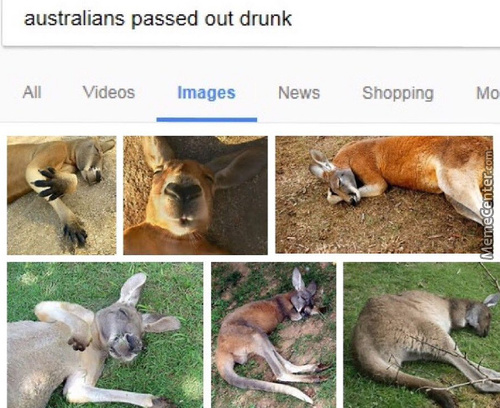 Australians Are One Of The Strangest And Scariest Species On This Planet