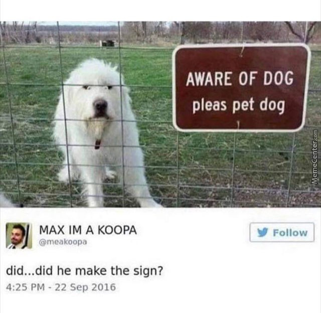 Aware Of Dog Pleas Pet Doggo
