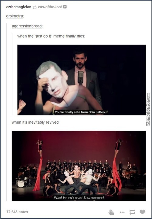 awesome tumblr 1252_c_5741367 shia labeouf memes best collection of funny shia labeouf pictures