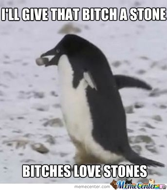 B*tches Loves Stones