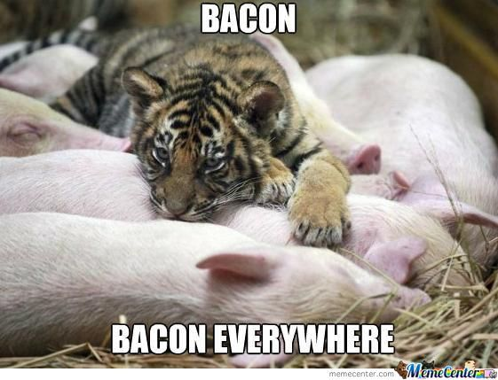 Chicken And The Pig Meme: Bacon By Moguai