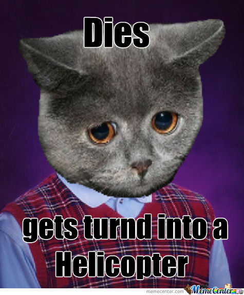 Bad Luck Cat By Recyclebin Meme Center