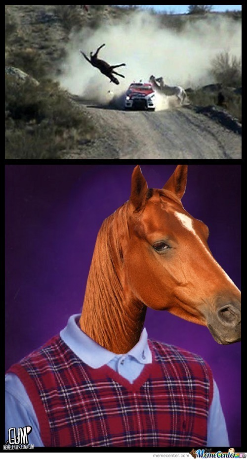 Bad Luck Horse