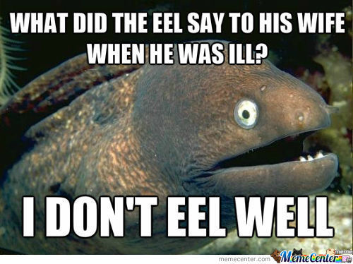 Bad Pun Eel