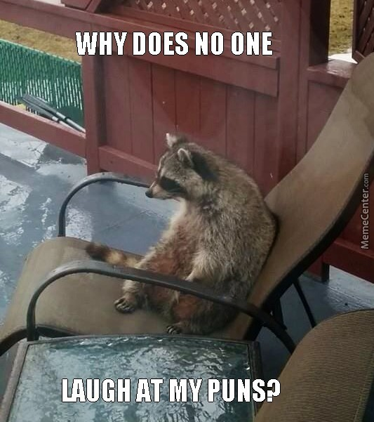 Bad Pun Raccoon
