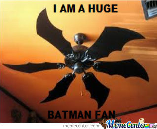 Batman Fan Lol
