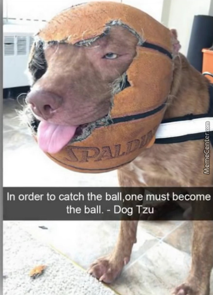 Be The Ball Said The Master