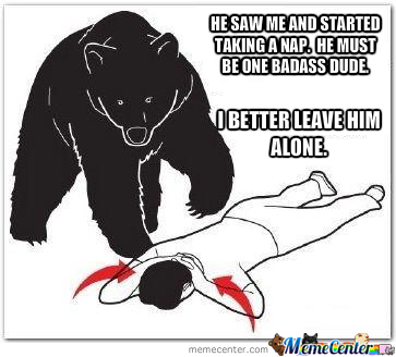 Bear Attack Logic