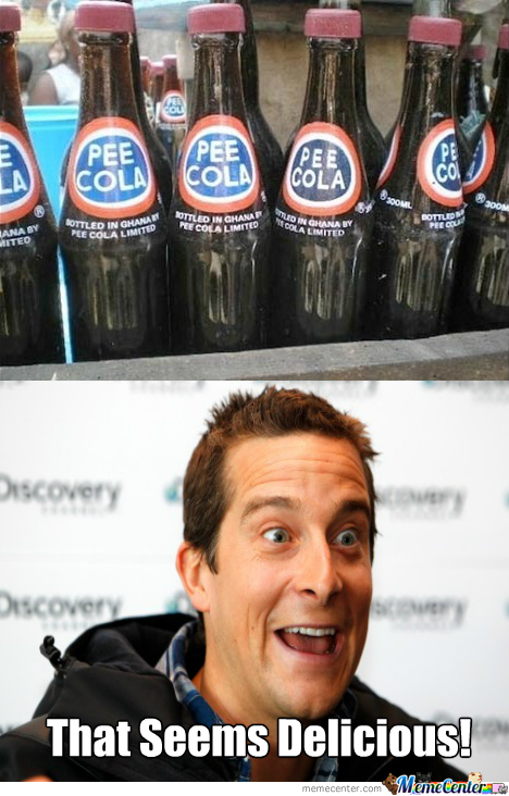 Bear Grylls Seal Of Approval