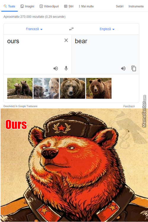 Bear In French