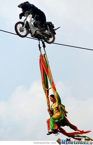 Bear On A Motorbike On A Tightrope With A Random Woman Dangling From It