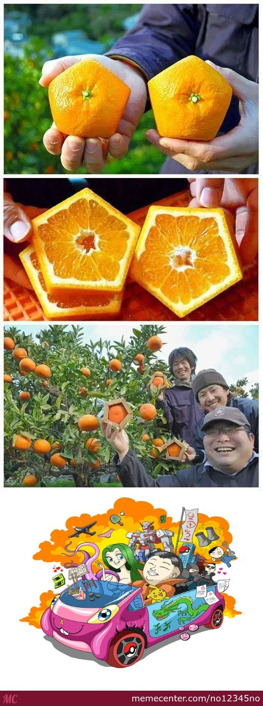 Because Normal Oranges Are Too Mainstream
