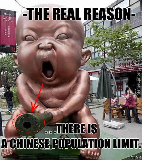 -Because They Have Little Chinese Demon Babies.....that Would Take Over The World.