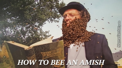 Beeing An Amish At Its Finest