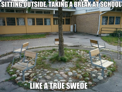 Being Social Is Just Straight Up Anti Patrotic. Never Forget, En Svensk Tiger