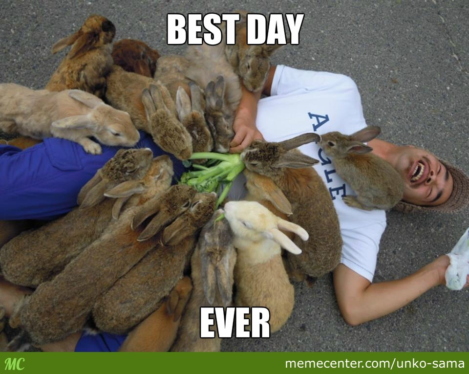 best day ever_o_2529149 best day ever by unko sama meme center