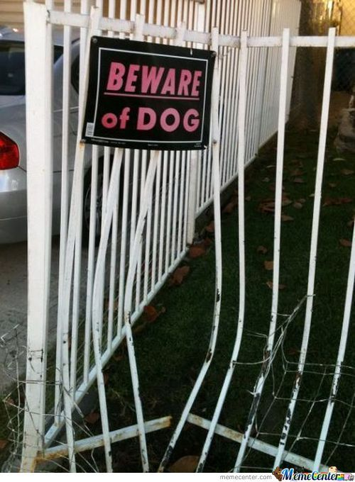 Beware Of Dog...wherever Dog May Be.