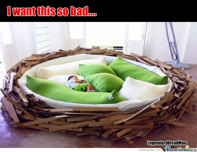 inside a bed in sleep like bird human the nest