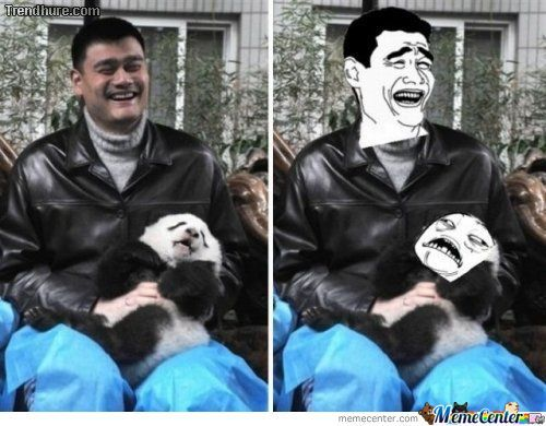 Bitch Please Yao Strikes Again ..