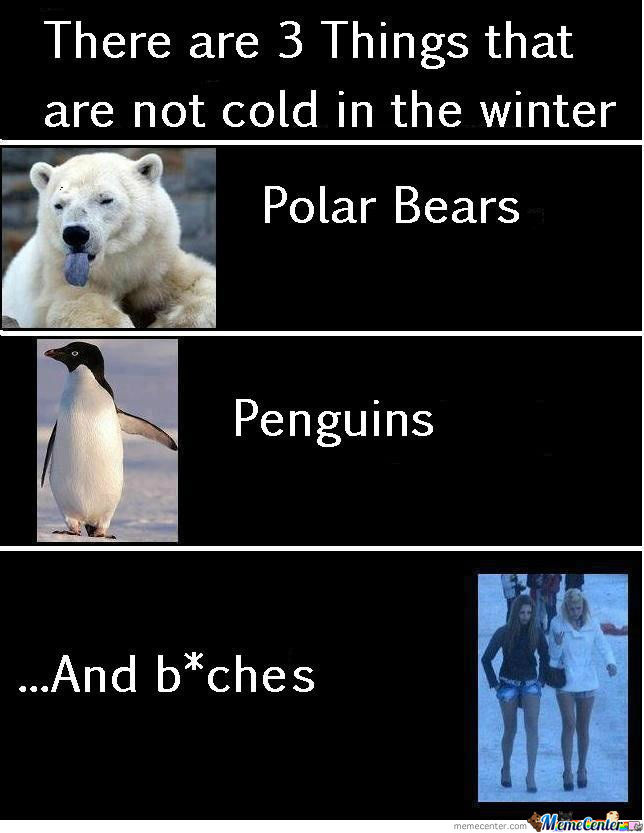 B*tches Are Polar Penguins..