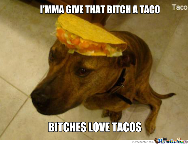 bitches love tacos_o_2053829 bitches love tacos by rancidtim meme center