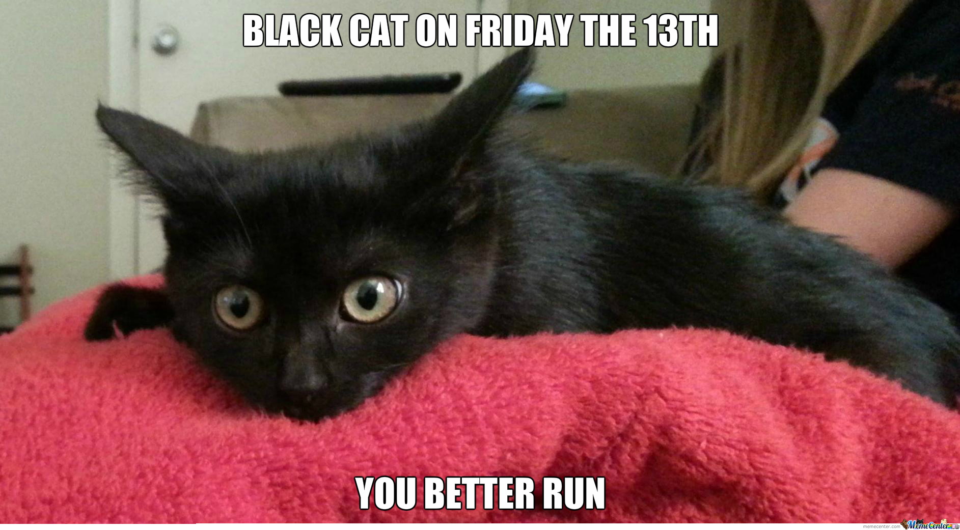 Black Cat Found On Reddit Captions Are My Own By Cuteasfuck Meme Center