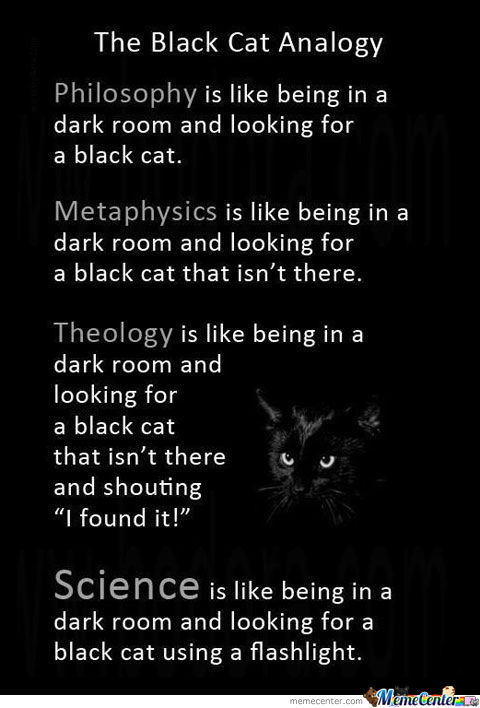 The Black Cat Anology