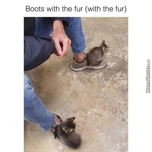 Boots With The Purrrr (Fur)