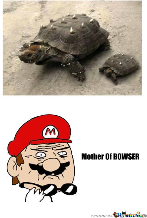Bowser Is That You ?