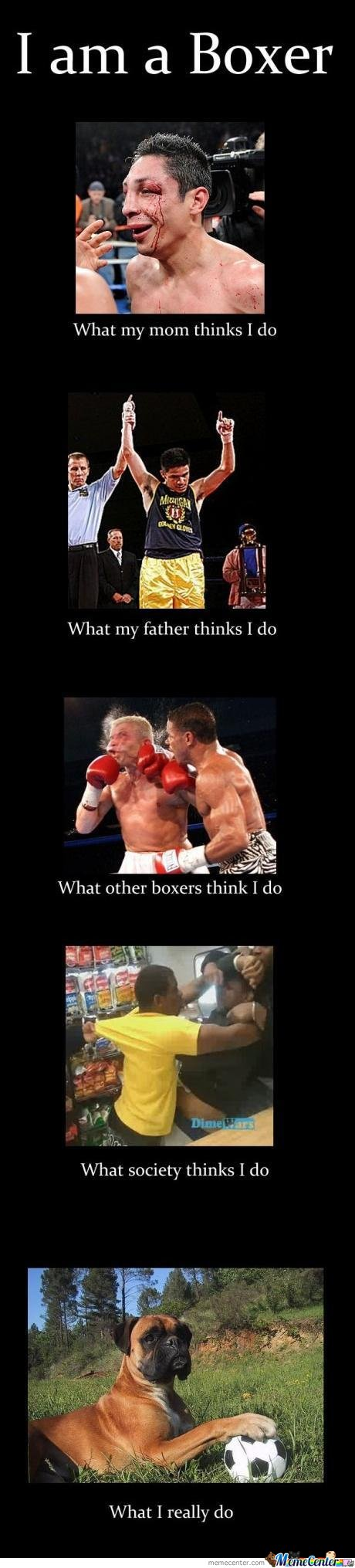 Boxing Fail